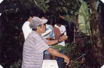 Chamanes - Curanderos Medicina Tradicional en Perú